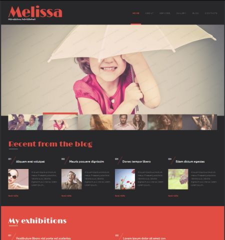 Photography-tema-gratis-wordress