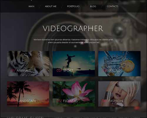 temas-wordpress-fotografia-videographer