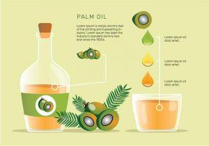 Pack de ilustraciones sobre aceite de oliva