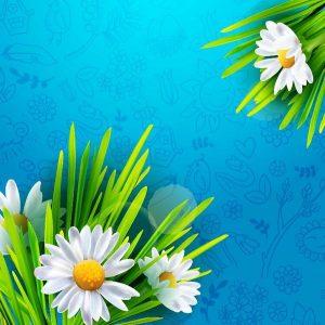 Flores de primavera con fondo con dibujos