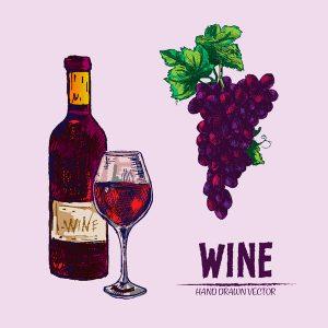 Botella de vijo dibujada a mano